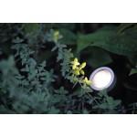 In Lite | Scope | LED | Buitenspots | 12 Volt